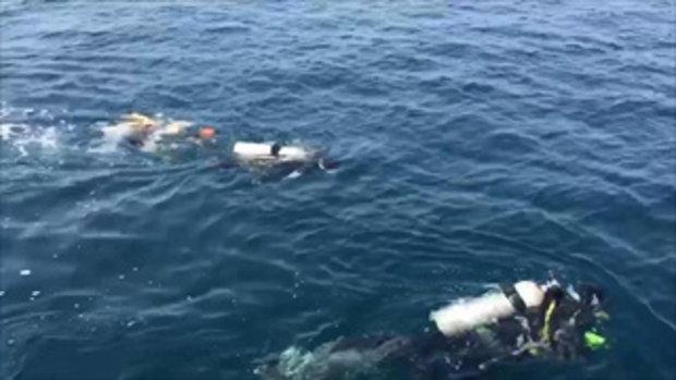 แฉคลิป 2 นักดำน้ำลอบยิงปลาพื้นที่อุทยานหมู่เกาะชุมพร