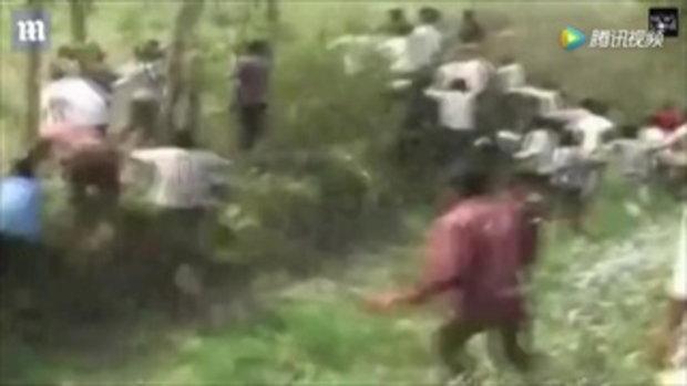 วิ่งป่าราบ ชาวบ้านอินเดียปีนต้นไม้ หนีเสือ ขย้ำกินคนแล้ว 22 ราย