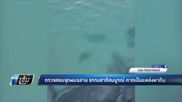 ตรวจสอบจุดพบฉลาม ธรรมชาติสมบูรณ์ คาดเป็นแหล่งหากิน - เข้มข่าวค่ำ