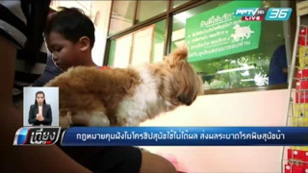 กฏหมายคุมฝังไมโครชิปสุนัขใช้ไม่ได้ผล ส่งผลระบาดพิษสุนัขบ้า