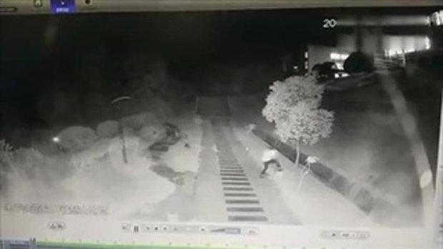 น่ากลัว นักศึกษาสาวจีนถูกฝูงสุนัขจรจัดไล่กัด วิ่งหนีตายระทึก