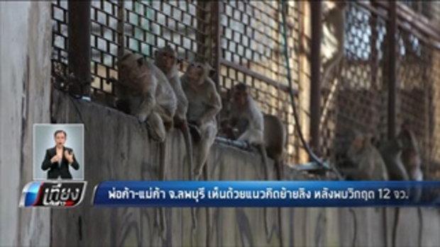 พ่อค้า-แม่ค้า จ.ลพบุรี เห็นด้วยแนวคิดย้ายลิง หลังพบวิกฤต 12 จังหวัด - เที่ยงทันข่าว