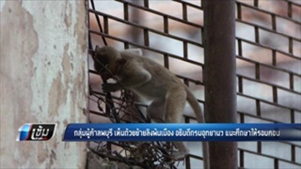 อธิบดีกรมอุทยานฯ แนะศึกษาให้รอบคอบย้ายลิงพ้นเมือง - เข้มข่าวค่ำ