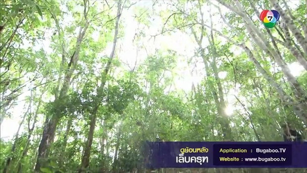 บู๊สนั่นป่า! ชีพ บุกช่วย มรกต - ไฮไลท์ละคร เล็บครุฑ 17 พ.ค.61 EP.7