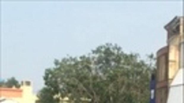 แสบจริงๆ! ฝูงลิงขโมยทุเรียนหลังรถกระบะ
