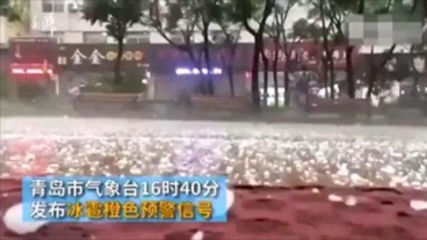 """โซเชียลฯจีนฮือฮา ชิงเต่ามี """"ฝนซีฟู้ด"""" จัดมาเต็มทั้งหมึก-กุ้ง-หอย"""