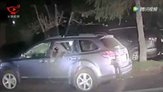 เข้าไปได้ไง? ตำรวจมะกันทุบกระจกรถ ช่วยชีวิตเจ้าหมี
