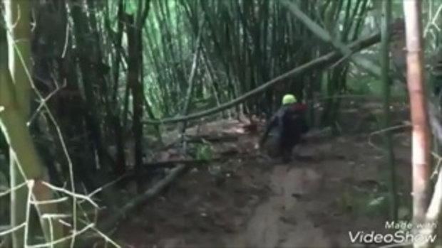 """มาดูเส้นทางการเดินป่าในภารกิจ """"อาสาพาน้องกลับบ้าน"""""""