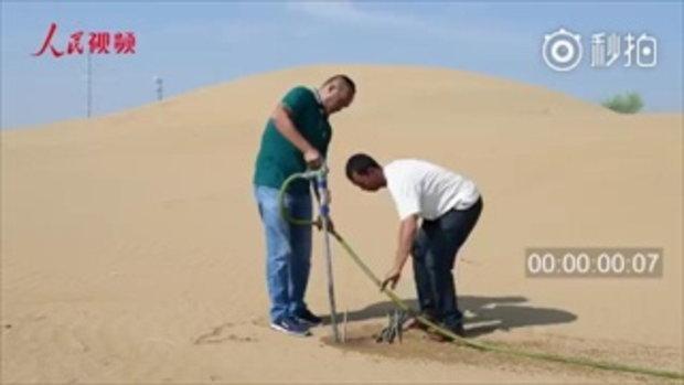 เพียงกระพริบตา เผยภาพการปลูกต้นไม้กลางทะเลทรายสไตล์จีน 10 วินาที เสร็จ
