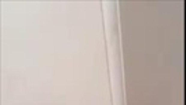 เจ้าหนูแฮมสเตอร์! เผลอวางไว้ แป๊บเดียว หันมาอีกที ปีนกำแพงขึ้นไปถึงเพดานซะแล้ว