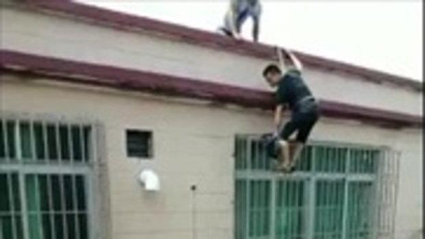 สองหนุ่ม อุตส่าห์เสี่ยงชีวิตช่วย เจ้าแมวตัวน้อย ไม่สนใจ-กระโดดตึกต่อหน้า
