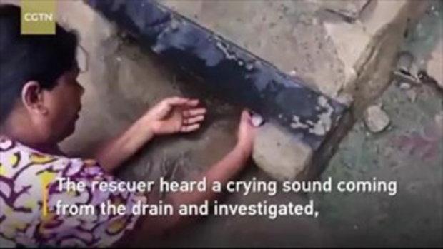 """หญิงอินเดียล้วงท่อน้ำทิ้ง เจอ """"ทารก"""" เพิ่งคลอดสายสะดือพันคอ"""