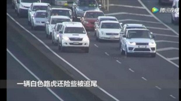 ภาพนี้ดีต่อใจ คนนิวซีแลนด์พร้อมใจกันหยุดรถ ให้เป็ดทั้งฝูงข้ามถนนไฮเวย์