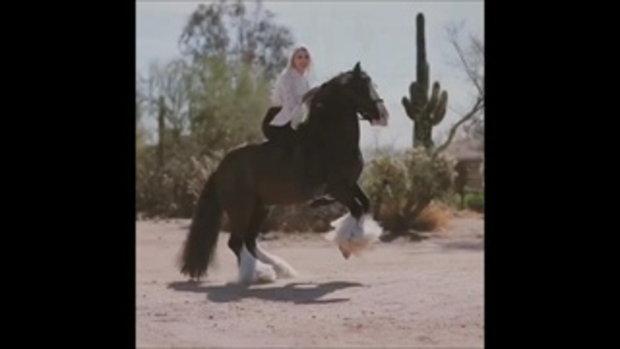 Alex Bauwens นักธนูสาวสวย บนหลังม้า ชาวอเมริกัน
