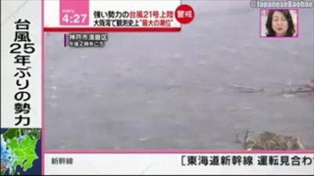 ทุ่มเทด้วยชีวิต นักข่าวญี่ปุ่นเสี่ยงตาย รายงานข่าวไต้ฝุ่นเชบี