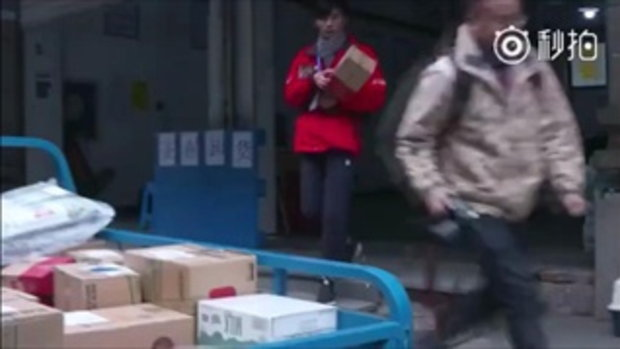 หนุ่มนักส่งของมีคู่หูเป็นลูกแมวจร ชาวเน็ตจีนสงสัยเป็นการตลาด