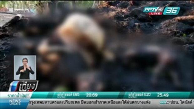 ไฟไหม้กองฟางลามคอกวัว ถูกไฟคลอกตาย 4 ตัว - เที่ยงทันข่าว