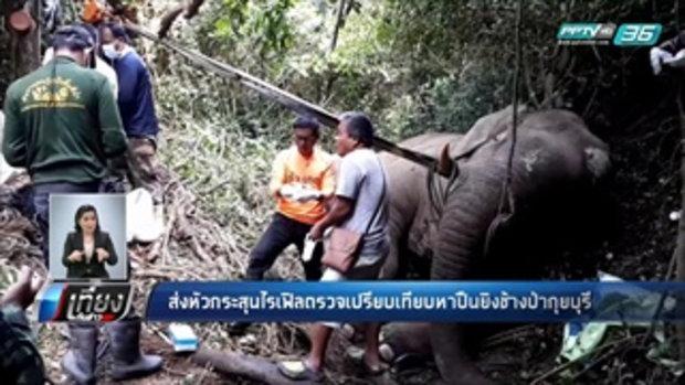 ส่งหัวกระสุนไรเฟิลตรวจเปรียบเทียบหาปืนยิงช้างป่ากุยบุรี - เที่ยงทันข่าว