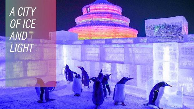 เทศกาลหิมะมหัศจรรย์เมืองจีน จัดใหญ่ ใครก็ชอบ