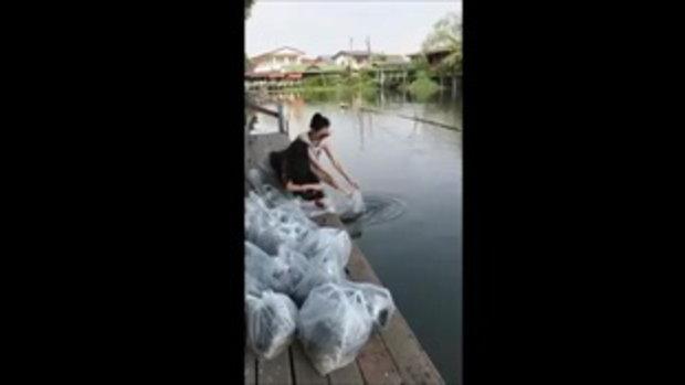 อั้ม พัชราภา สวยและใจบุญมาก!! เหมาปลาหมดแผง ทำบุญปล่อยปลา น่ารักที่สุด...