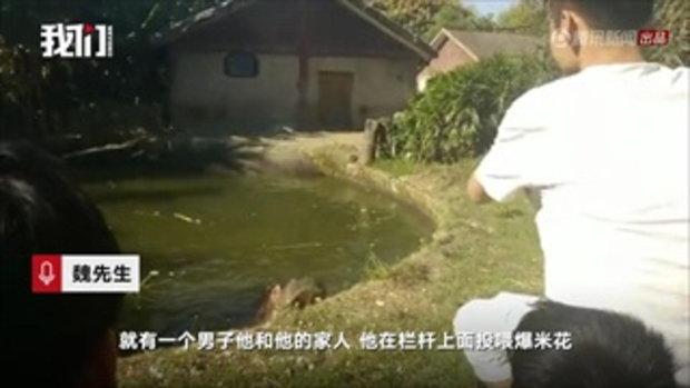ด่ายับ ชายจีนปีนรั้วกั้นให้ป๊อบคอร์นฮิปโป แถมโยนถุงพลาสติกใส่ในปาก