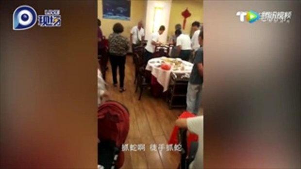 ร้านอาหารวุ่น งูเลื้อยหนีตายจากห้องครัว ลูกค้าใจกล้าช่วยจับด้วยมือเปล่า