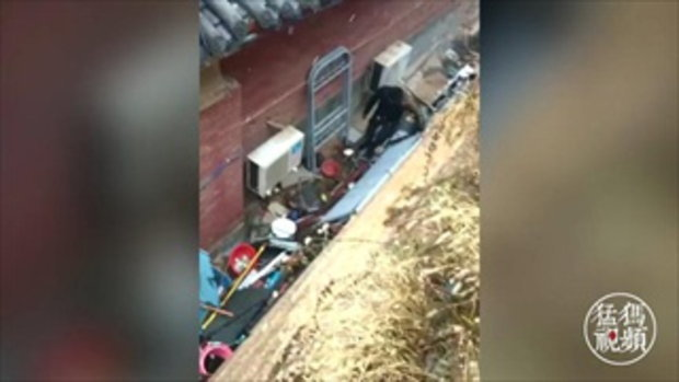 หนุ่มจีนเล่นใหญ่ โชว์กำลังภายในฉลองหิมะแรก แต่ฉากจบ...ดูแทบไม่ได้