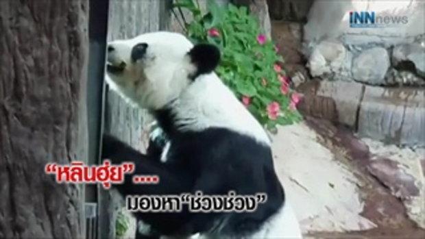 ช่วงช่วงตาย..สะเทือนสัมพันธ์ไทย-จีน?