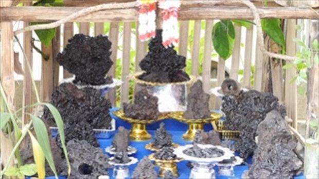 ฮือฮา! หินสีดำโผล่กลางสวนยางนับหมื่นชิ้น เชื่อเป็นเหล็กไหล