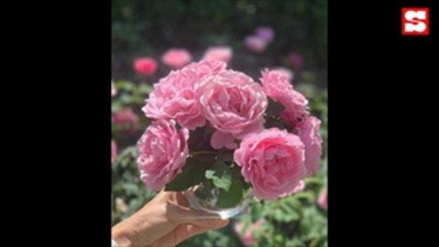 เปิดสวนดอกไม้บ้าน