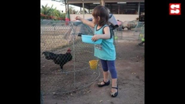 น้องมารีน ลูกสาว น้ำ รพีภัทร ช่วยคุณพ่อเลี้ยงไก่ ชีวิตเรียบง่าย ใกล้ชิดธรรมชาติ