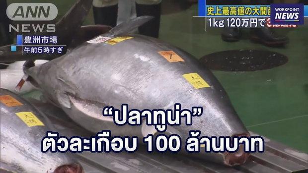 """ร้านซูชิประมูล """"ปลาทูน่า"""" ตัวละเกือบ 100 ล้านบาท l ข่าวเวิร์คพอยท์ l 7 ม.ค. 62"""