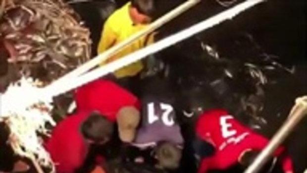 ซาบซึ้ง! พี่น้องชาวประมง ช่วยเหลือเต่ามะเฟืองที่ติดอวนลงสู่ทะเลสำเร็จ