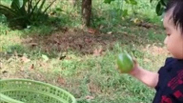 น้องอคิณ ลูกชายเนย โชติกา  นั่งชิลบ้านสวนคุณยาย