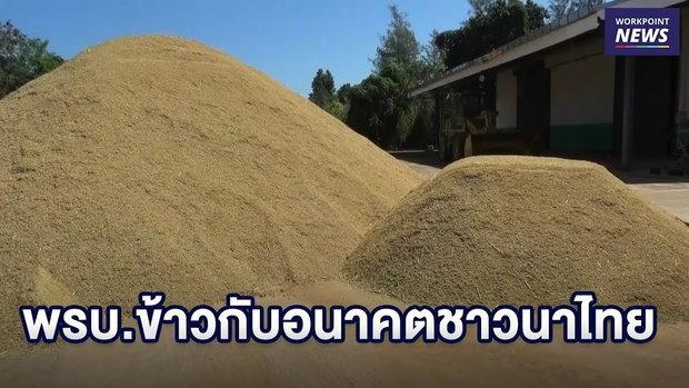 พรบ. ข้าวกับอนาคตชาวนาไทย l บรรจงชงข่าว l 19 กพ.62