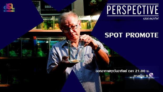 Perspective Spot Promote : ธีรศักดิ์ สุพินพง - ผู้เพาะพันธุ์ปลากัดสีทองคนเเรกของโลก [13 เม.ย 62]