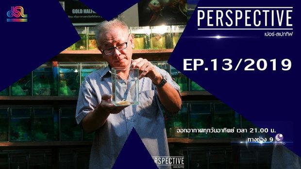 Perspective EP.13 : ธีรศักดิ์ สุพินพง - ผู้เพาะพันธุ์ปลากัดสีทองคนเเรกของโลก [13 เม.ย 62]