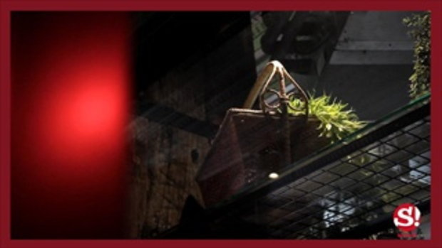 คาเฟ่ลับ 53 Cafe&Bar ในโรงแรม Mestyle Garage ตกแต่งอย่างเท่ ถ่ายรูปเก๋ทุกมุม