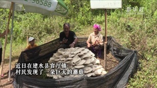 ชาวบ้านยูนนานตะลึง