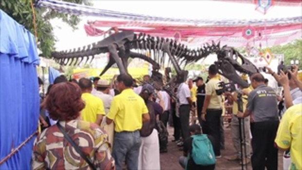 ฮือฮา! ขอนแก่นค้นพบไดโนเสาร์สายพันธุ์ใหม่ ตัวที่ 10 ของชาติไทย