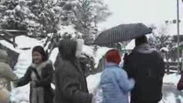 เดินกลางหิมะ