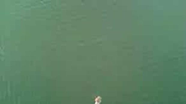 กระโดดจากเรือสูง100ฟุต