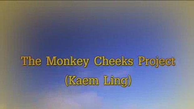 โครงการแก้มลิง