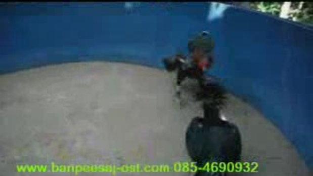 เจ้าเขียวตีนโต www.banpeesaj-ost.com