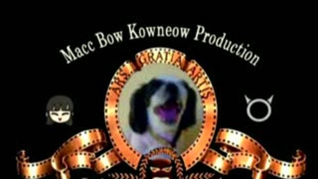 BowMacc.com Wedding Presentation - พรีเซ็นเทชั่นหล