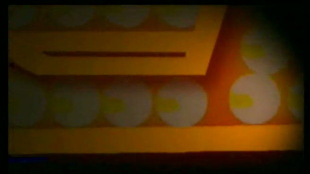The Seed Show - เดอะสตาร์ 6 (1)