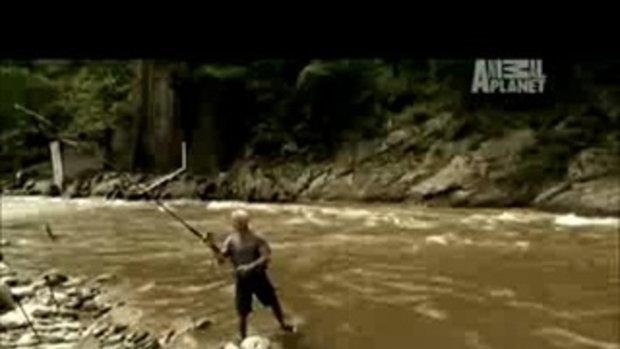 สัตว์ประหลาดในแม่น้ำ!!