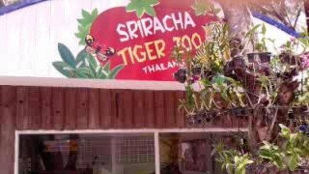 เทื่ยวสวนเสือศรีราชา  3