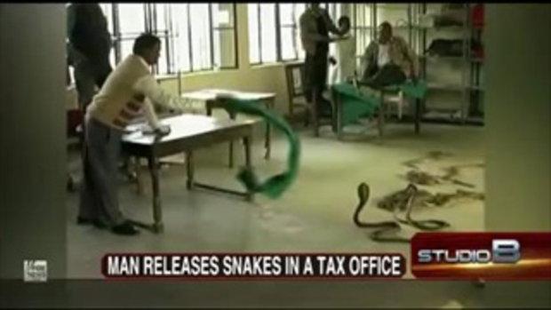 บังขอจ่ายภาษีเป็นงูเห่าจะได้ไหมล่ะ