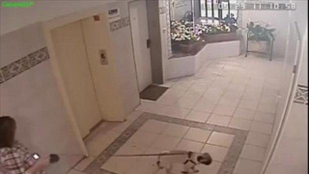 คลิปเจ้าตูบรอด หลังถูกลิฟต์ดึง เพราะไม่ยอมเข้าลิฟต์พร้อมเจ้าของ